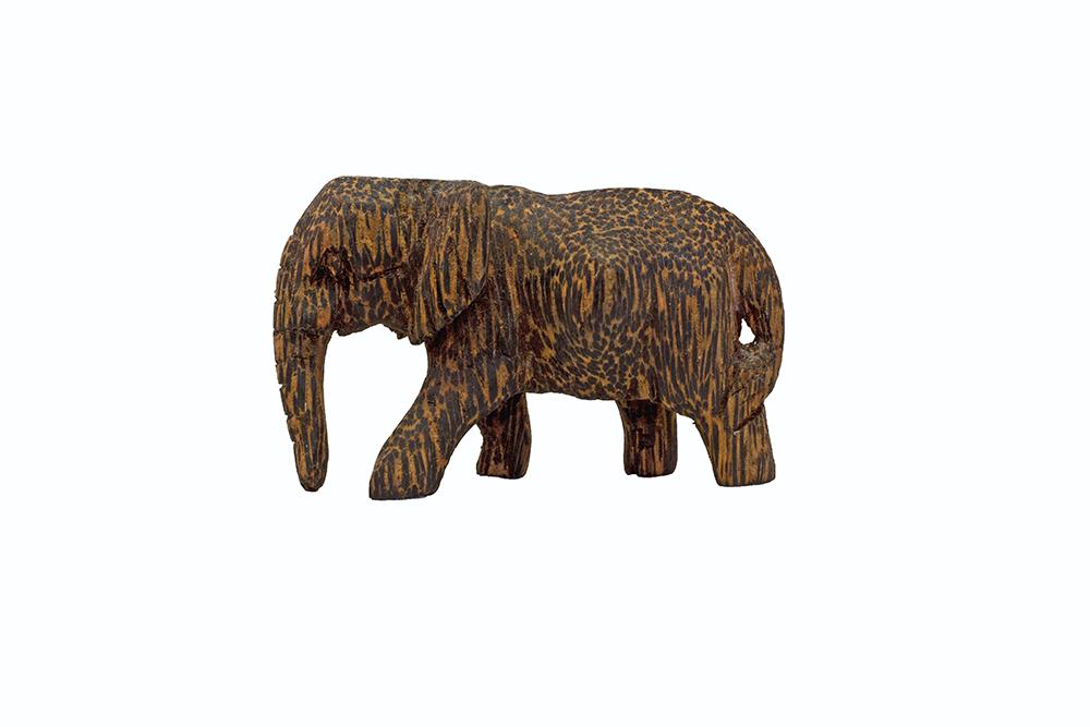 nettle-creative-product-photography-elephant-1